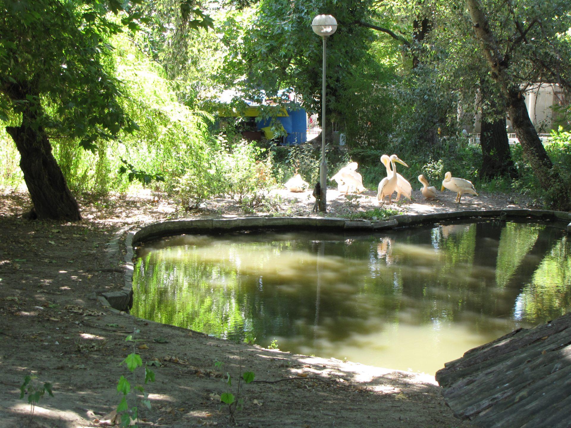 Varna - Mořský park (zoo koutek)